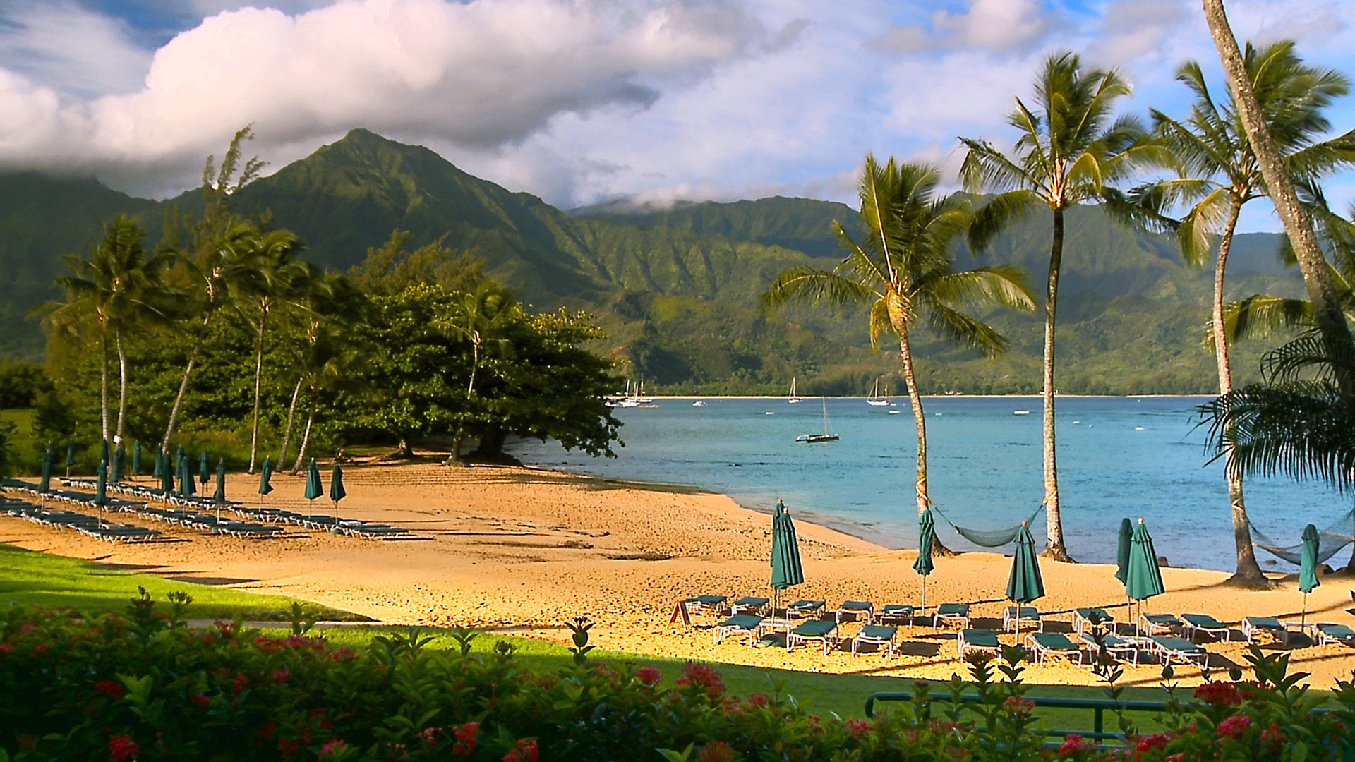 10 New Hawaii Beach Pictures Wallpapers Full Hd 1920 1080: SEE The Most Beautiful Hawaii Beaches Photos From Our New