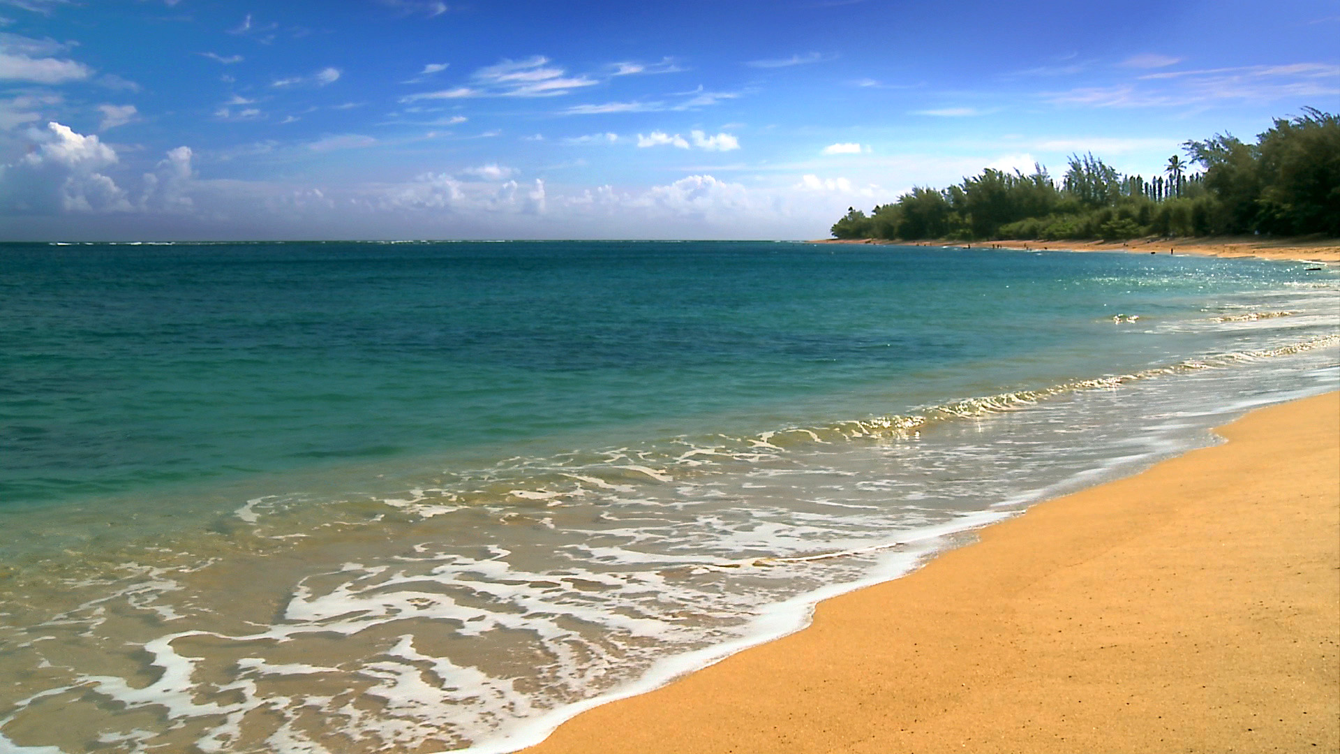 See The Most Beautiful Hawaii Beaches Photos From Our New Hd Video Dvd Amp Blu Ray The 1 Nature
