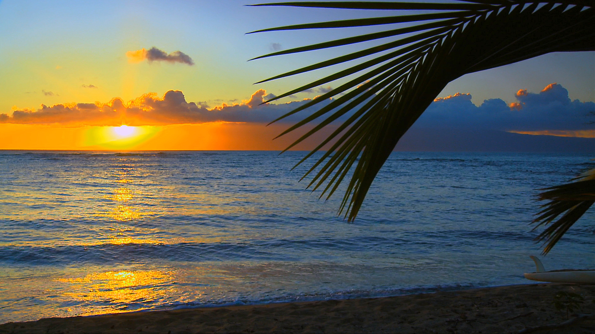 See the most beautiful hawaii beaches hd blu ray video dvd for Immagini 1920x1080